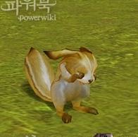 Aion Pet 4