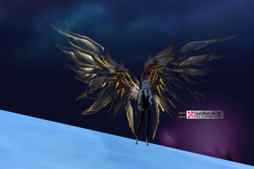 Aion 3.0 Wings 12